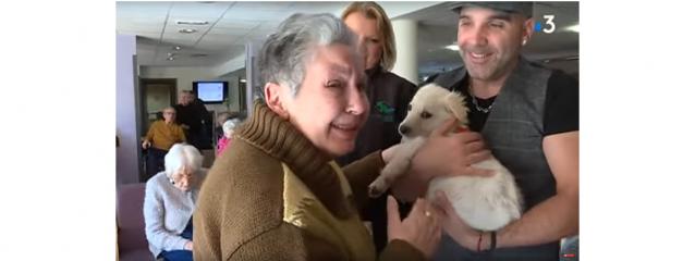 L'EHPAD de Pézilla-la-Rivière adopte un chien pour ses résidents